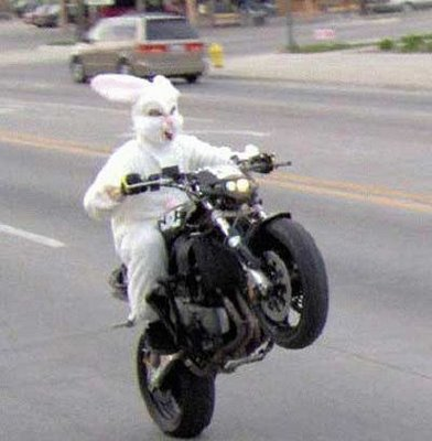 easter-bunny-motorcycle