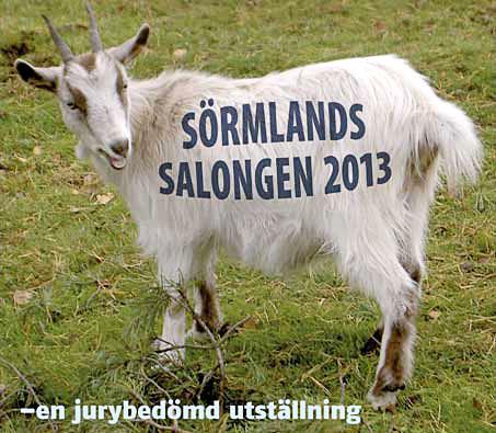 konsth_sormland2013_453