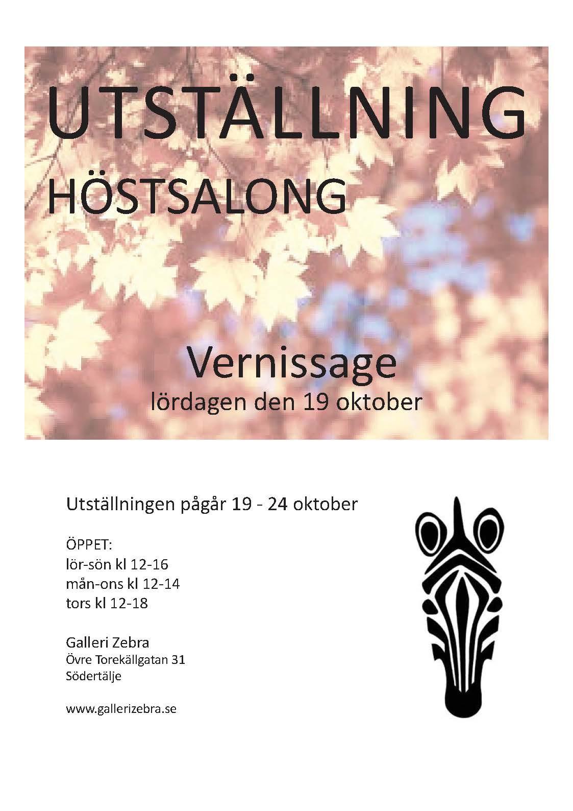 zebra höstsalong 2013 affisch